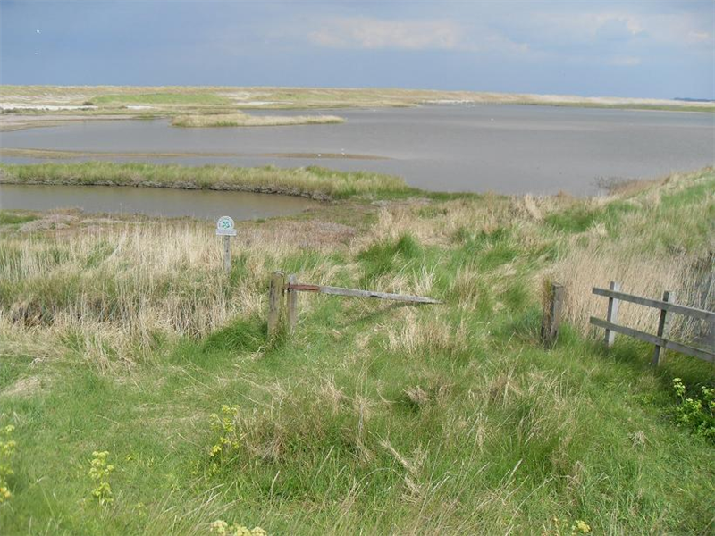 Cley - Arnolds marsh