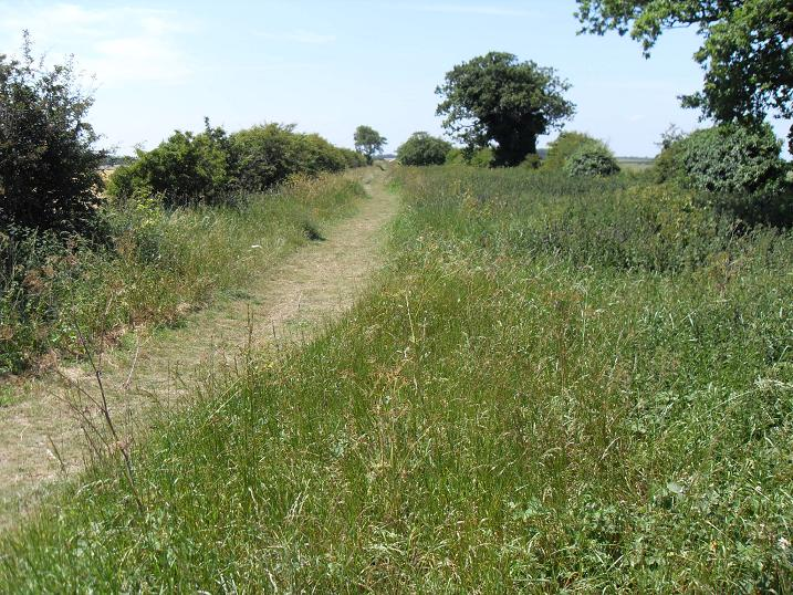 Coastal footpath through Choseley