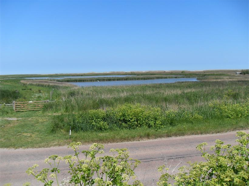 Cley - Richardson's Scrape & Pat's Pool