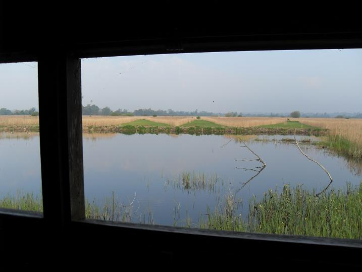 Strumpshaw - view from Fen hide
